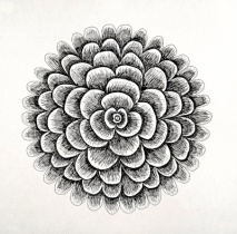 Fibonacci Flower
